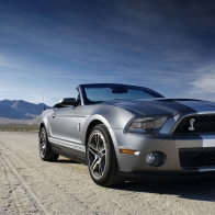 Ford Shelby Mustang Gt 500 Hd Wallpapers