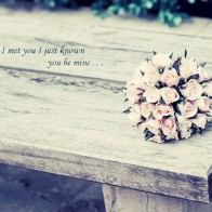 From The Moment I Met You Wallpaper