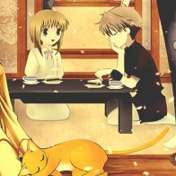 Fruits Basket Cover