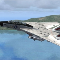 Fsx F 14 Tomcat Vf 41 Wallpaper