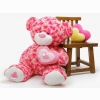 Funadress Teddy Bear Hd Wallpapers 13