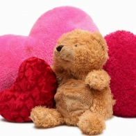 Funadress Teddy Bear Hd Wallpapers 18
