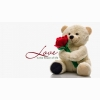 Funadress Teddy Bear Hd Wallpapers 21