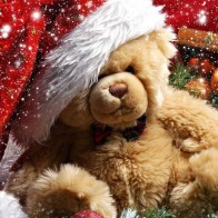 Funadress Teddy Bear Hd Wallpapers 22
