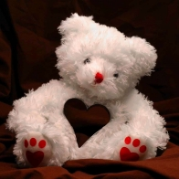 Funadress Teddy Bear Hd Wallpapers 28