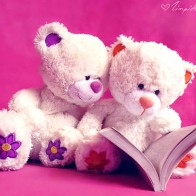 Funadress Teddy Bear Hd Wallpapers 35