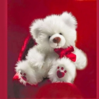 Funadress Teddy Bear Hd Wallpapers 40