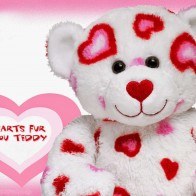 Funadress Teddy Bear Hd Wallpapers 43