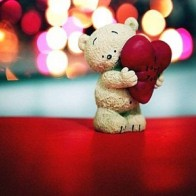 Funadress Teddy Bear Hd Wallpapers 47