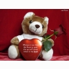 Funadress Teddy Bear Hd Wallpapers 48