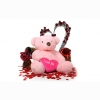 Funadress Teddy Bear Hd Wallpapers 49