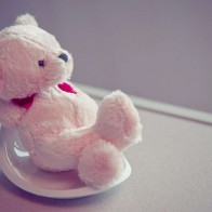 Funadress Teddy Bear Hd Wallpapers 50