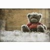 Funadress Teddy Bear Hd Wallpapers 8