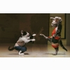 Funny Cat Fistfight Wallpapers