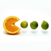 Download funny fruits, funny fruits  Wallpaper download for Desktop, PC, Laptop. funny fruits HD Wallpapers, High Definition Quality Wallpapers of funny fruits.