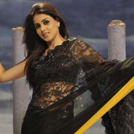 Genelia Dsouza In Black Saree Modeling Pose In Naa Ishtam