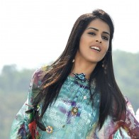 Genelia Dsouza In Colorful Top In Naa Ishtam
