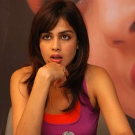 Genelia Dsouza In Press Wallpaper
