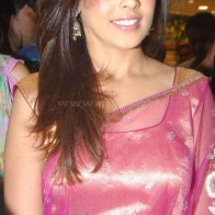 Genelia Dsouza In Saree Wallpaper