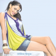 Genelia Dsouza Shor Cloths Wallpaper