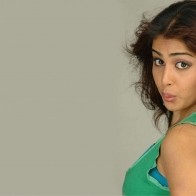 Genelia Dsouza Side Pose In Green Top