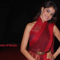 Genelia Dsouza Smile Wallpaper