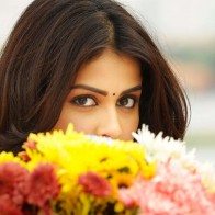 Genelia In Telugu Movie Wallpaper
