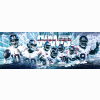 Giants Superbowl Champs Cover
