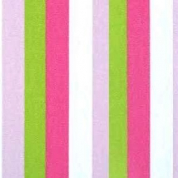Girly Stripes Cover