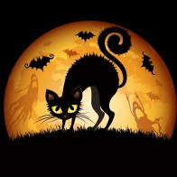 Halloween Cats Bats Wallpapers