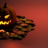 Download halloween pumpkin cover, halloween pumpkin cover  Wallpaper download for Desktop, PC, Laptop. halloween pumpkin cover HD Wallpapers, High Definition Quality Wallpapers of halloween pumpkin cover.