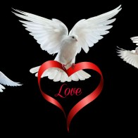 Happy Valentines Day Love Wallpapers 53