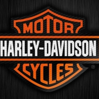 Harley Bar Sheild Carbon