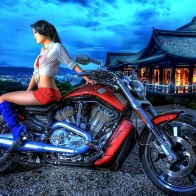 Harley Davidson In Asia Wallpaper