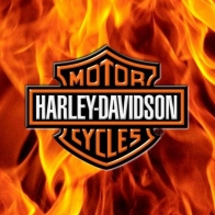 Harley Davidson Wallpaper 3