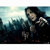 Harry Potter And The Deathly Hallows Wallpaper 45