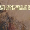 Download haters are like crickets cover, haters are like crickets cover  Wallpaper download for Desktop, PC, Laptop. haters are like crickets cover HD Wallpapers, High Definition Quality Wallpapers of haters are like crickets cover.