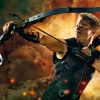 Download hawkeye in the avengers wallpapers, hawkeye in the avengers wallpapers Free Wallpaper download for Desktop, PC, Laptop. hawkeye in the avengers wallpapers HD Wallpapers, High Definition Quality Wallpapers of hawkeye in the avengers wallpapers.