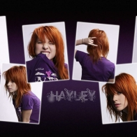 Hayley Williams 3 Wallpapers
