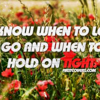 Hold On Tight Cover