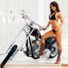 Download hooters chopper wallpaper, hooters chopper wallpaper  Wallpaper download for Desktop, PC, Laptop. hooters chopper wallpaper HD Wallpapers, High Definition Quality Wallpapers of hooters chopper wallpaper.