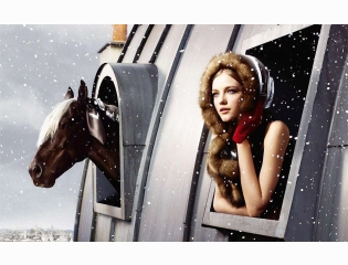 Horse Amp Girl Wide Wallpapers