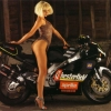 Download beautiful chick bike model wallpaper 86, beautiful chick bike model wallpaper 86  Wallpaper download for Desktop, PC, Laptop. beautiful chick bike model wallpaper 86 HD Wallpapers, High Definition Quality Wallpapers of beautiful chick bike model wallpaper 86.