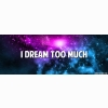 I Dream Too Much Cover