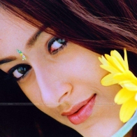 Ileana D Cruz Wallpaper