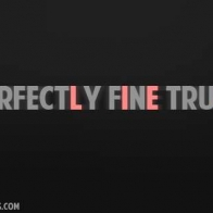 Im Perfectly Fine Lies Cover