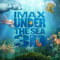 Imax Under The Sea 4 Wallpapers