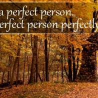 Imperfect Person Perfectly Cover