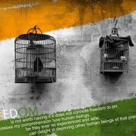 Independence Day Freedom Quotes India 2013