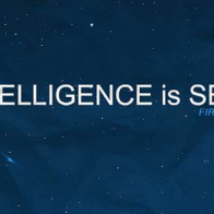 Intelligence Is Beautiful Cover